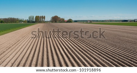 Rows of soil after planting potatoes in the Netherlands. It is springtime.