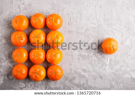 Rows of tangerines forming a rectangle and one tangerine on a gray concrete background, top view, flat lay. #1365720716
