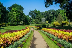 Royal Botanic Gardens, Peradeniya are about 5.5 km to the west of the city of Kandy in the Central Province of Sri Lanka. It attracts 2 million visitors annually. It is near the Mahaweli River.
