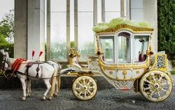 Royal Indian Horse drawn wedding carriage