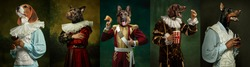 Royal. Models like medieval royalty persons in vintage clothing headed by dog's heads on dark vintage background. Concept of comparison of eras, artwork, renaissance, baroque style. Creative collage.