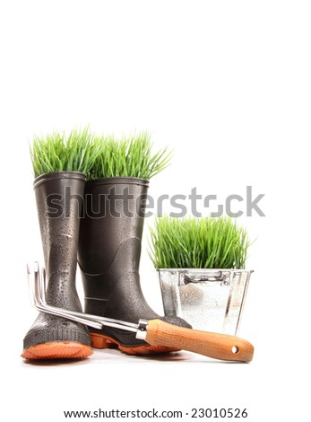 Rubber boots with grass in pot and tool on white