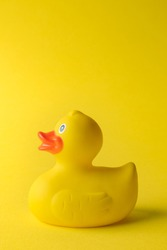Rubber duck toy for swimming on yellow background.