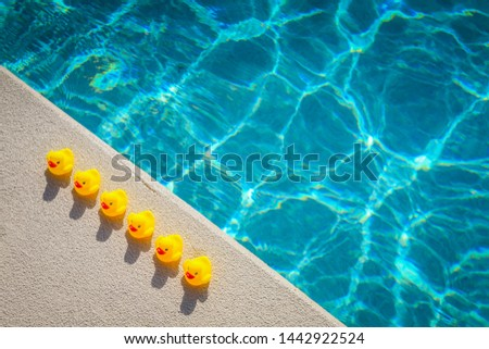 Rubber ducks basking in the sunshine at a swimming pool. Pefect for the business saying 'get your ducks in a row'.88