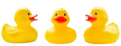 rubber ducks isolated on a white background