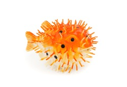 Rubber toy for relaxation fugu fish isolated on white background side view