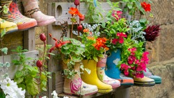Rubber Wellington Boots are lined up and used as flower pots in the coastal village of Staithes, North Yorkshire, UK