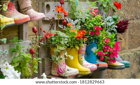 Rubber Wellington Boots are lined up and used as flower pots in the coastal village of Staithes, North Yorkshire, UK Foto stock ©