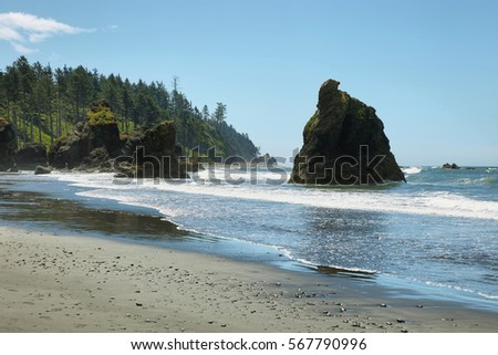 Ruby beach in Washington state coast, USA