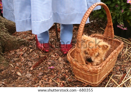 Ruby slippers and dog in a basket