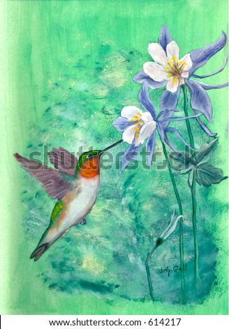 Ruby Throated Hummingbird & Columbine Painting by Judy Gail - stock photo