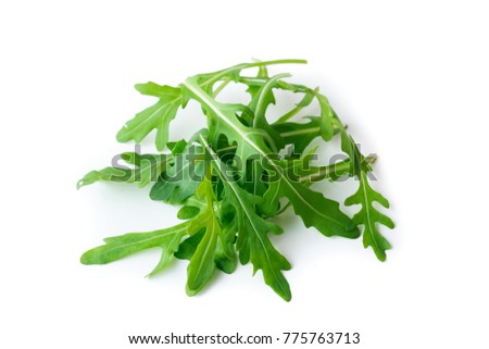 Rucola isolated on white background  ストックフォト ©