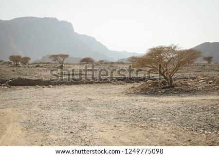 Rugged, remote, and dry natural terrain and the hot desert environment of Ras Al Khaimah mountaneous region in U.A.E. Nature with trees, mountains and rough dry desert landscape. Zdjęcia stock ©