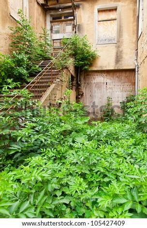 Ruin of city house with overgrown garden - stock photo