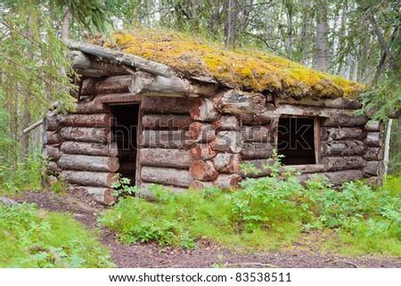 Ruin of old Yukon log cabin hidden in the boreal forest (taiga) of Yukon Territory, Canada