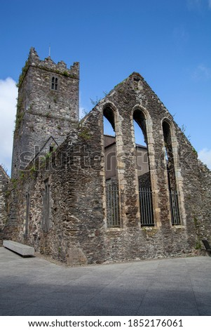 Ruined cathedral called Blackfriars Abbey in Waterford, Ireland