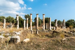 Ruined columns of Ionic double colonnade stoa in Agora market place area of Nysa ancient city in Aydin province of Turkey. The agora was a wide market place spreading 113.5m in the east-west direction