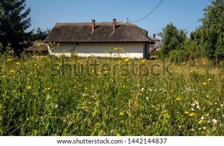 Ruined house in orange field, Csatka, Bakony, Hungary Stock fotó ©