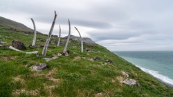 Ruins of a structure made of bones and ribs of whales in the abandoned old Eskimo village of Naukan on the coast of the Bering Strait. Environs of Cape Dezhnev. Chukotka Peninsula, Far East of Russia.