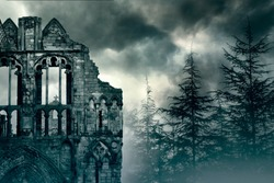 Ruins of an Old Castle in foggy Forest in UK
