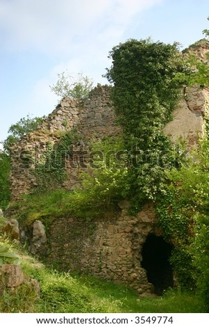Ruins of an old overgrown caste ruin