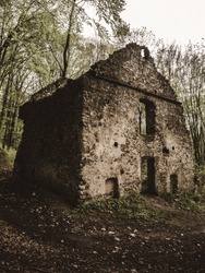 Ruins of an old stone house in the forest