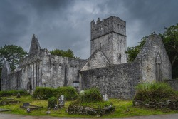 Ruins of ancient, 15th century monastery, Muckross Abbey is one of the major ecclesiastical sites found in the Killarney National Park, Kerry, Ireland