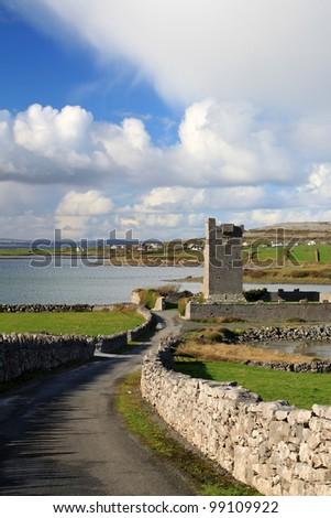 Ruins of Shanmuckinish Castle near Muckinish West, Ireland