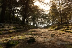 Ruins of the ancient antique city of Phaselis in the forest at sunset in the sunrays in Turkey. Turkey national landmarks. Tours in Turkey