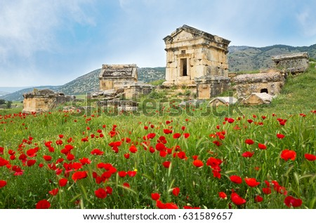 Ruins of the ancient city of Hierapolis and red poppies, Pamukkale in Turkey. Stok fotoğraf ©