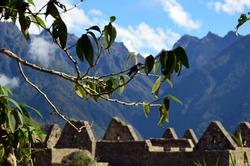 Ruins of the ancient city of Machu Picc, Peru