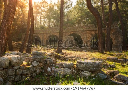 Ruins of the aqueduct of the ancient ancient city of Phaselis illuminated by the bright sun in Pine forest, woods in sunny weather in Turkey, Antalya, Kemer. Turkey national nature landmarks.  Stok fotoğraf ©