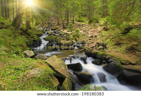 Run of mountain river in forest  - stock photo