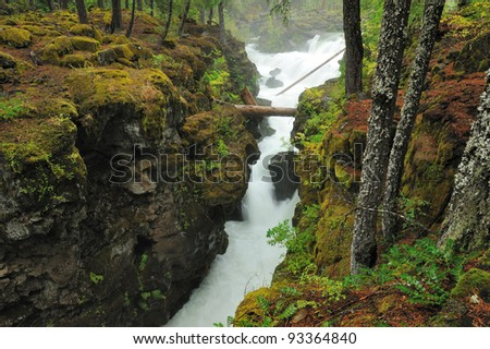 running creek in Rogue Gorge area, Oregon, USA