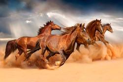 Running Horses image