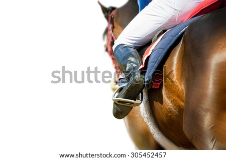 running racing thoroughbred horse coming first isolated on white detail
