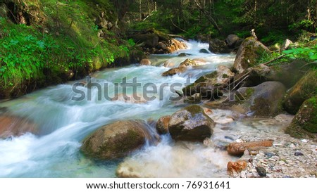 Running water in the forest, South Tyrol, Italy