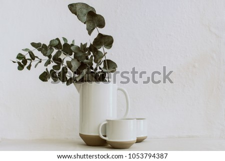 Rural abstract background with vases and eucalyptus brunches . Rustic scene  #1053794387