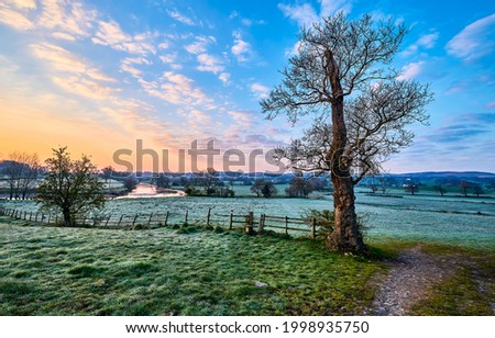 Rural area in the early morning at dawn. Early morning nature landscape. Countryside at dawn. Rural area at dawn