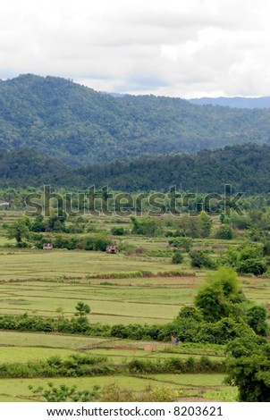 rural asian landscape