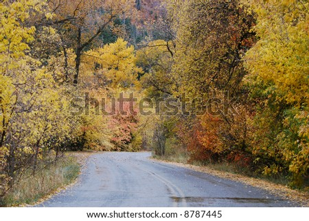 Rural Autumn Road - stock photo