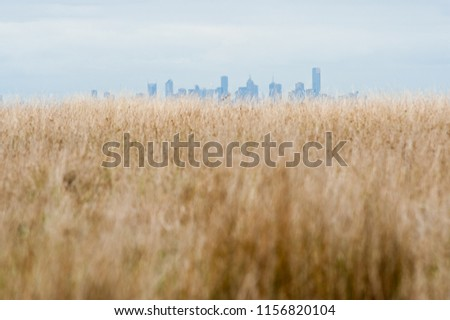 Rural brown grass paddock with  distant view of hazy city skyline in background, Melbourne Australia