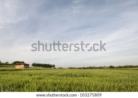 Rural building in the Po valley, Mezzomerico, Italy