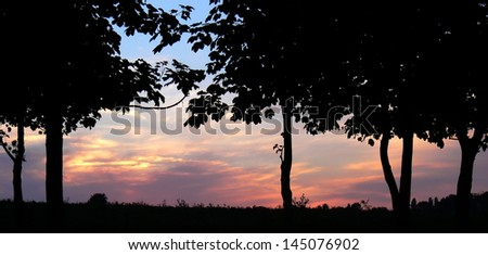 Rural cloudscape with silhouette of trees #145076902