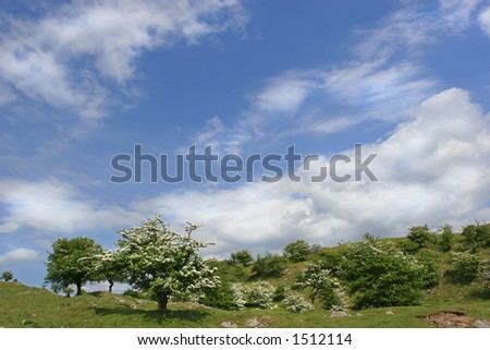 Rural countryside with hawthorn trees in blossom, set against a blue sky and clouds. Located in the Brecon Beacons National Park, Wales, United Kingdom.