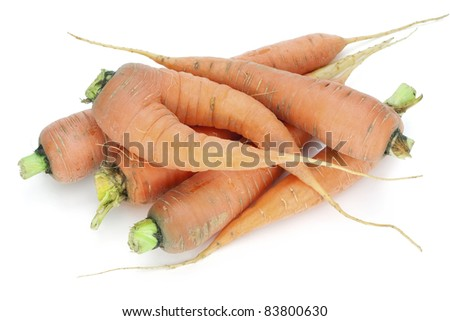 Rural ecological carrot - is grown up without fertilizers. White background