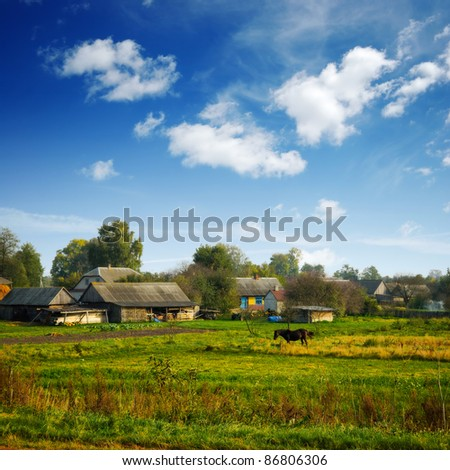rural farm and horse on the field