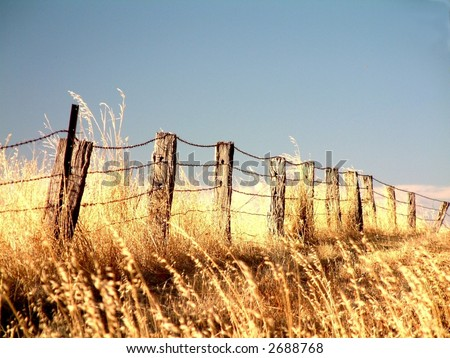 Rural farm boundary fencing in harsh drought stricken environment featuring rustic old posts in poor condition and long dead dry grass outback australia