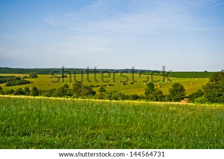 Rural field with scattered straw bales after harvest in the Summertime