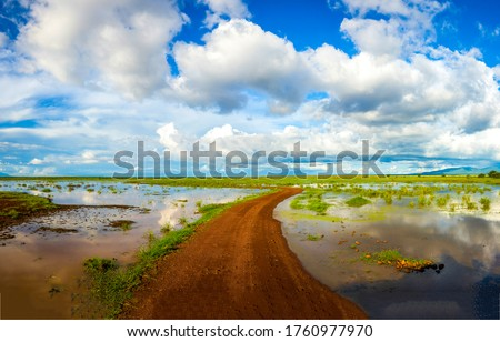 Rural flooded field road after rain. Flooded fild view. Flooded field road